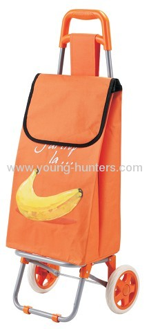 Special Market Hand Shopping Folding Trolley Bag