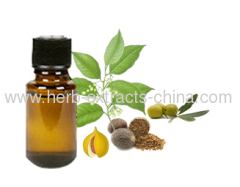 Used as Flavoring Agent and Cuisine Seasoning Nutmeg Oil