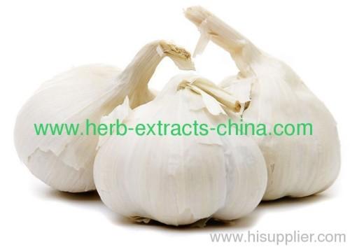 Food Flavoring Spice Seasoning Light Yellow Garlic Oil