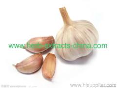 Pharmaceutical Flavoring Light Yellow Oily Garlic Oil