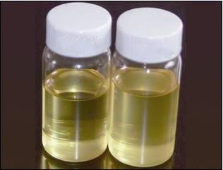 China 100% Natural Extracted Garlic Oil