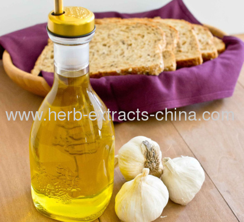 Food Industry Garlic Root Extract Garlic Essential Oil For S