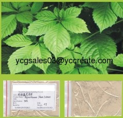 Gynostemma Pentaphyllum P.E.; Gypenosides ; Herbal extract