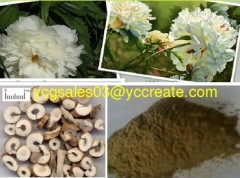 Peony P.E.; Paeoniflorin ; Standardized Herbal Extract