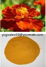 Zeaxanthin, Marigold P.E.; Herbal extract