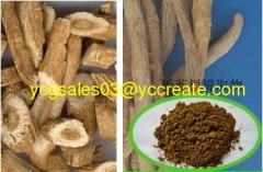 Indigowoad Root P.E.; Herbal extract