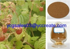 Raspberry Leaf Extract; Raspberry ketone