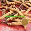 Cordyceps Extract, Polysaccharides