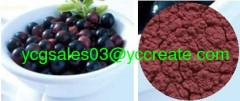 Acai Berry Extract, 5% Vitamin C