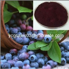 Blueberry P.E., Anthocyanidin