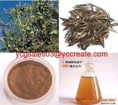 Olive Leaf Extract, Oleuropein