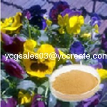 Pansy Extract / Viola tricolor extract