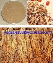 Angelica Extract,