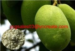 Irvingia gabonensis Seed extract; Mangiferin