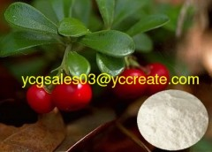 98%Ursolic Acid from Uva Ursi Extract