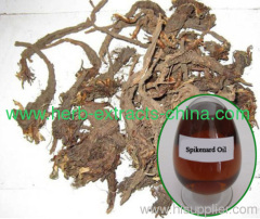 Anointing Oil Nardostachys jatamansi Spikenard Oil