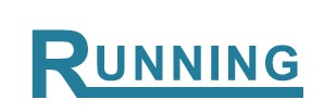 Running Electronics Co., Ltd.