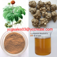 Notoginseng Extract, 80% Notoginsenoside