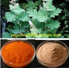 Macleaya cordata Extract, Sanguinarine
