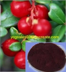 Cranberry P.E., Anthocyanin