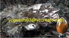 Maitake Mushroom Extract, Polysaccharides