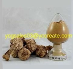 Agaricus blazei Extract, polysaccharides