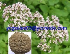 Valerian Root Extract, valeric acid
