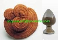 Ganoderma extract, Polysaccharides