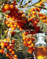 Clear Yellow to Brownish Oily Seabuckthorn Seed Oil