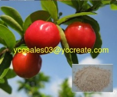 Natural Acerola Cherry Extract, polyphenol, Vitamin C