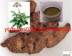 Adhesive Rehmannia Root Tuber Extract
