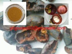Mangosteen peel extract