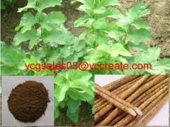 Burdock seed Extract Powder, Arctiin