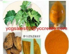 Fluid extract of rhubarb / Rhubarb Root Extract