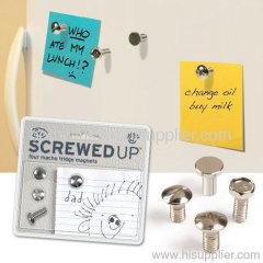 screw magnet