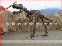 Realistic Life-size dinosaur skeleton