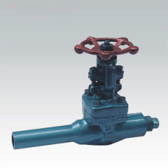 Extended Body Gate valves 800Lb