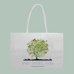 ECO-friendly paper bagshopping bag
