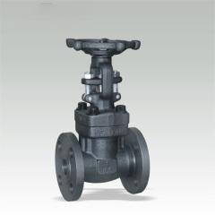 Flanged End Gate valves 150Lb~1500Lb