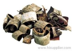 Herbal Treatment of Anxiety and Insomnia Magnolia Bark Oil