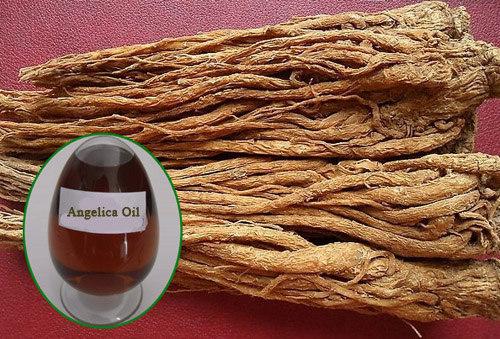 Angelica root oil benefits in hormonal disturbance