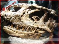Fiberglass Fossil Dinosaur Skull