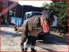 BBC walking with dinosaur costume