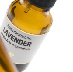 Headaches Insomnia Burns and Sunburns Treatment Lavender Oil