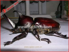 Outdoor Fiberglass insects model