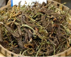 Used as Anointing and Aromatic Treasure Spikenard Pure Oil