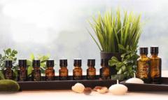 Sedative Calming Healing Pelargonium geranium essential oil