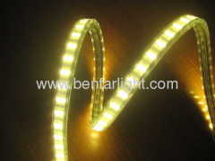 2 Row 5050 SMD 100leds Strip with 220v Voltage