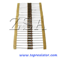 22ohm/1W Resistor carbon film