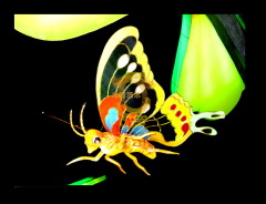 high quality color lantern